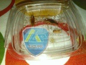 Hamamböceği Mücadelesi